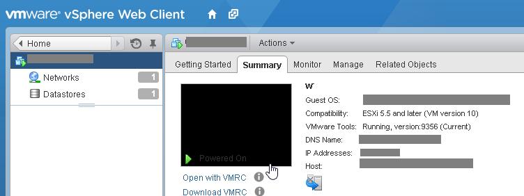 VMware vCenter web console: unable to type special